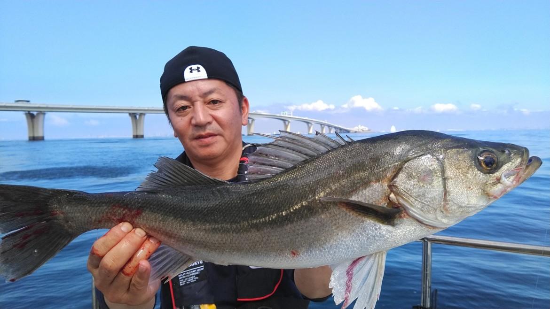 湾奥 五目釣り